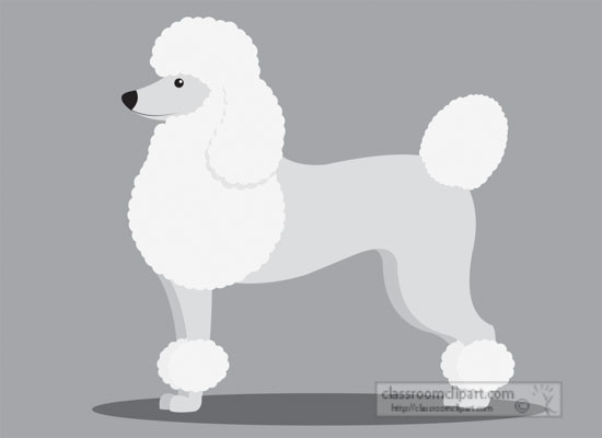 poodle-dog-sideview-gray-clipart.jpg