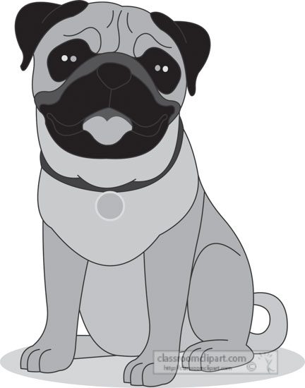 pug-dog-sitting-on-all-fours-gray-clipart.jpg