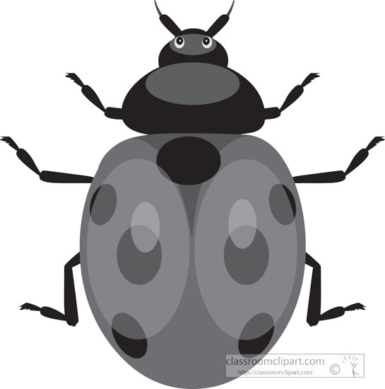 red-black-ladybug-gray-clipart.jpg