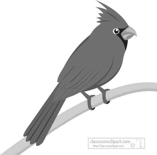 red-cardinal-bird-gray-clipart.jpg