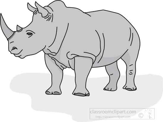 rhinoceros_04A_gray.jpg