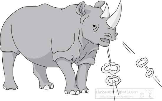 rhinoceros_05A_gray.jpg