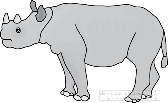rhinoceros_327_4A_gray.jpg