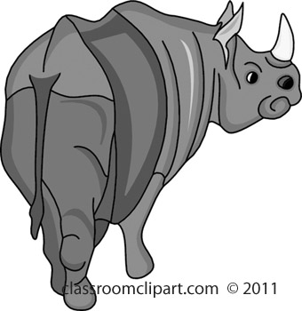 rhinoceros_411B.jpg