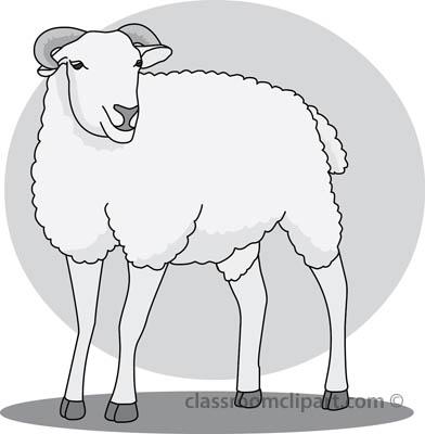 sheep_412_gray.jpg