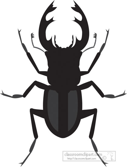 stag-beetle-insect-gray-clipart-818.jpg