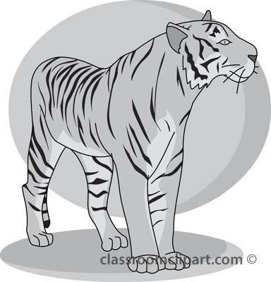 tiger_32804_gray.jpg