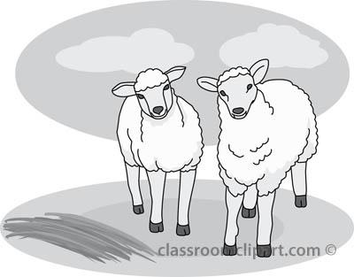 two_sheep_gray.jpg