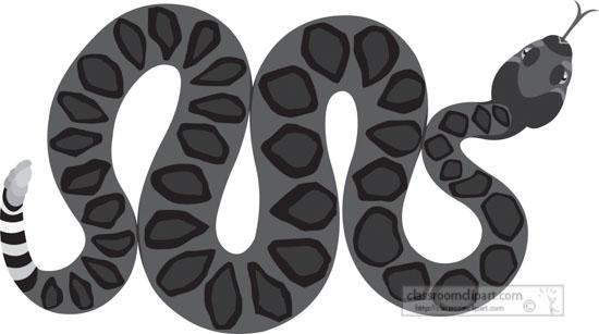venomous-coiled-rattlesnake-gray-clipart.jpg