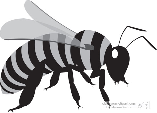 yellow-black-honey-bee-gray-clipart.jpg