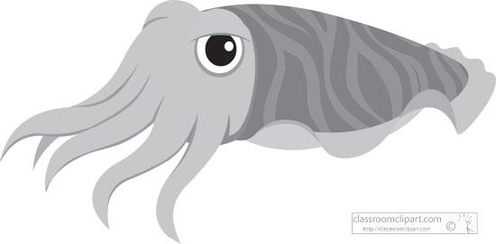 yellow-orange-cuttlefish-mollusc-gray-clipart.jpg