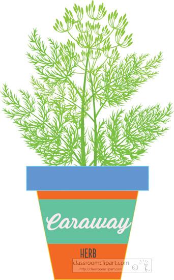 caraway-herb-growing-in-pot-clipart.jpg