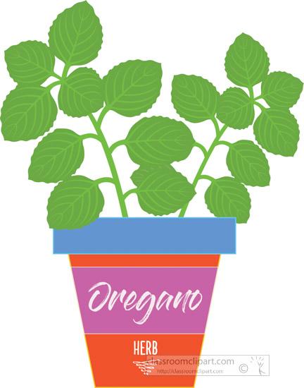oregano-growing-in-planter-herb-clipart-3181.jpg