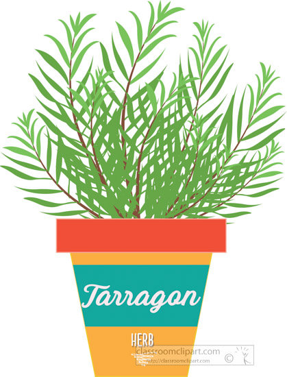 tarragon-growing-in-planter-herb-clipart-2318.jpg