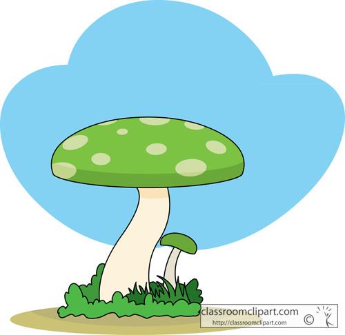 green_mushroom_116.jpg