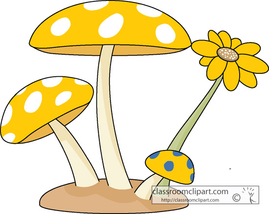 mushroom_flower_1219.jpg