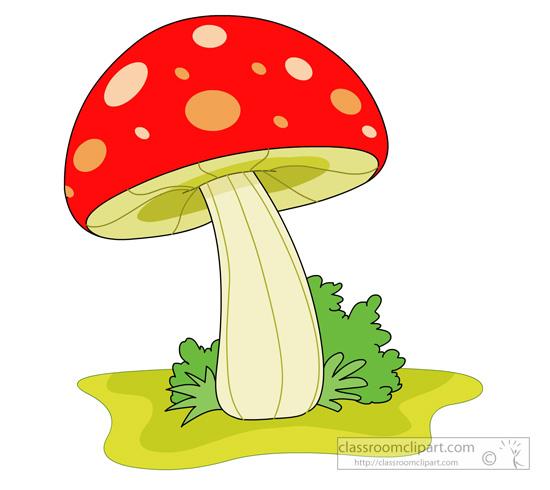 red_mushroom_01.jpg