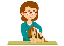 Search Results For Veterinarian Clip Art Pictures