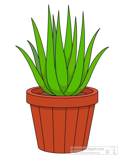 aloe-vera-plant-in-a-pot-clipart-5721.jpg