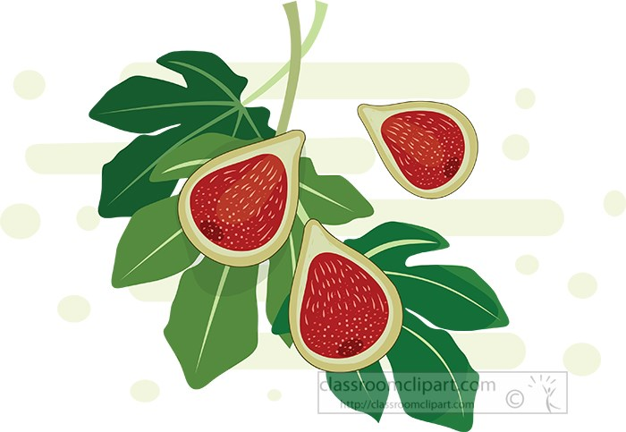 fresh-figs-cross-section-with-leaves.jpg