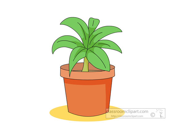 green-in-house-plant-with-planter.jpg