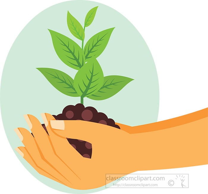 hands-holding-grow-trees-in-soil-clipart.jpg