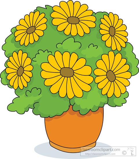 house_plant_flower_in_pot_03.jpg