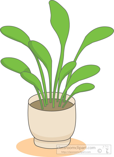 house_plants_cartoon_05.jpg