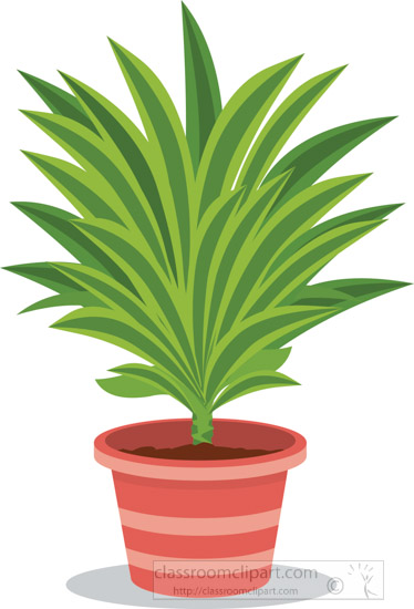 indoor-decorative-potted-plants-clipart.jpg