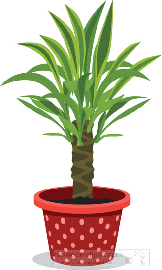 indoor-yucca-tree-potted-plants-clipart.jpg