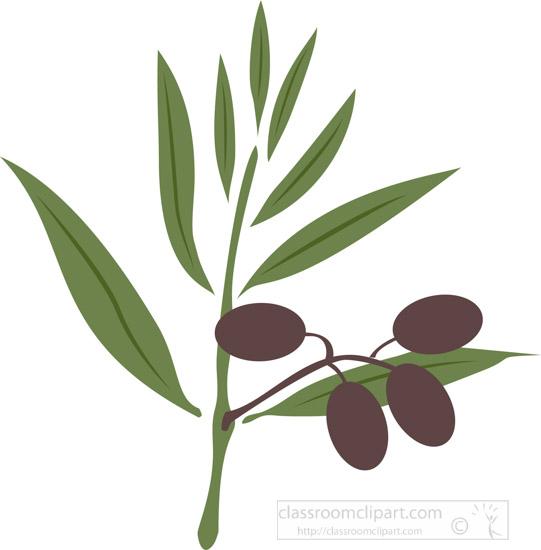 olive-branch-leaf-and-olives-clipart-2.jpg