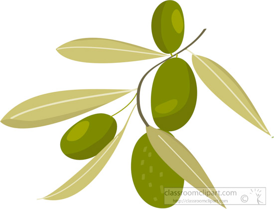 olives-growing-on-tree-with-leaf-clipart.jpg