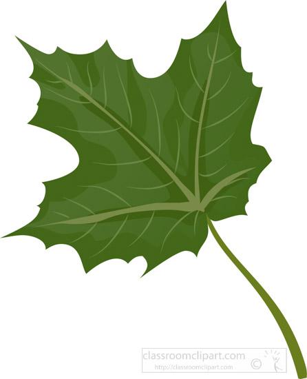 single-green-maple-tree-leaf-clipart.jpg