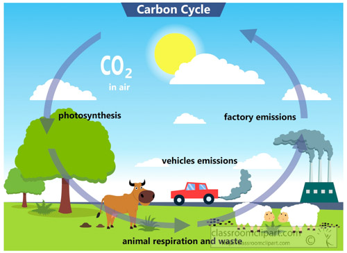 carbon-cycle-clipart.jpg