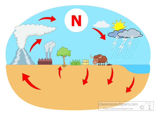 science clipart nitrogen cycle diagram classroom clipart sulfer cycle labeled nitrogen cycle diagram jpg