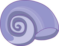 free seashells clipart clip art pictures graphics