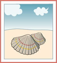 sea-shell-on-beach-clipart-134.jpg