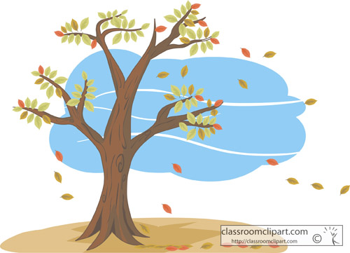 autum_tree_with_leaves.jpg