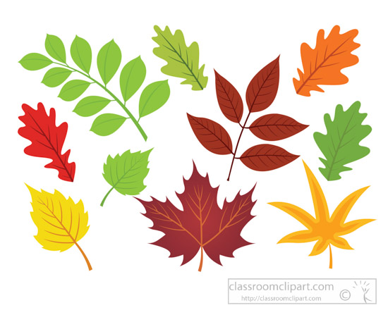 different-types-of-leaves-fall-foliage-clipart.jpg