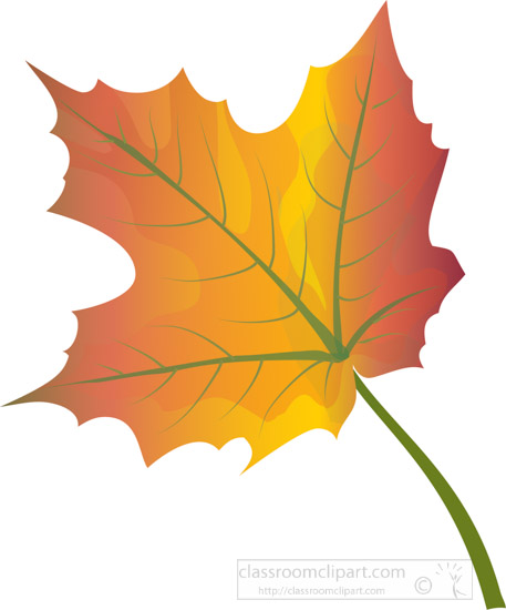 single-orange-red-yellow-fall-maple-tree-leaf-clipart.jpg