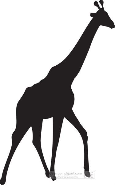 africa giraffe 1 silhouettejpg