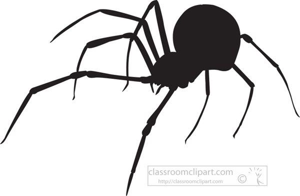 black--widow-spider-silhouette-413.jpg