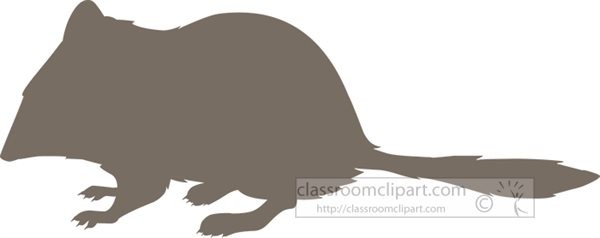 crest-tailed-marsupial-mouse-silhouette.jpg