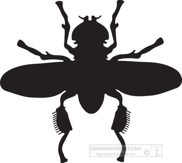 flying-insect-silhouette-clipart-13.jpg