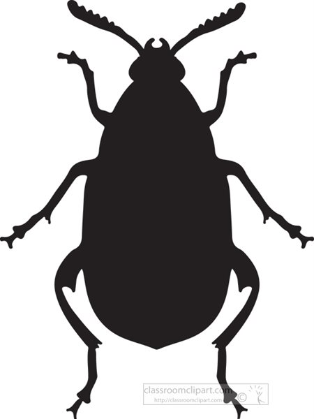 insect-beetle-silhouette-clipart-4.jpg