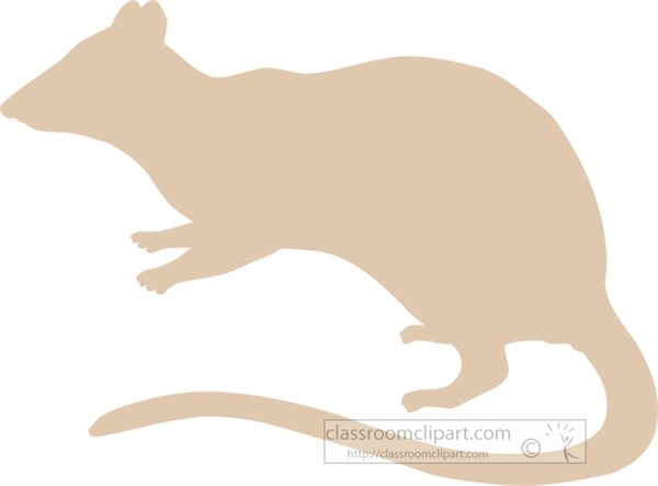 marsupial-spotted-tailed-native-cat-silhouette.jpg
