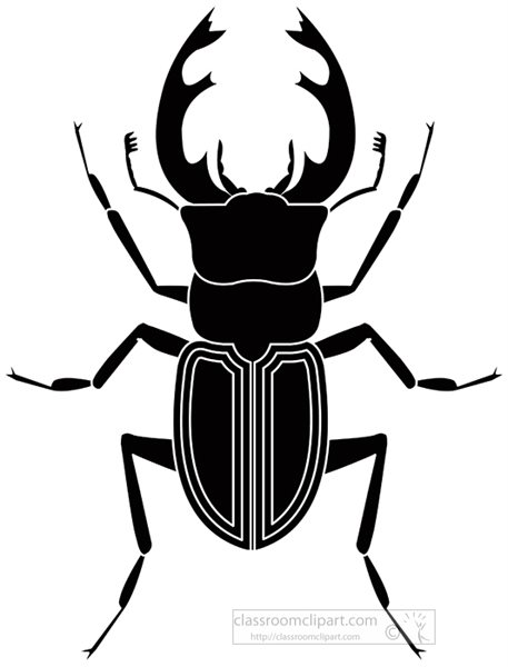 stag-beetle-insect-black-white-silhouette-clipart-818.jpg