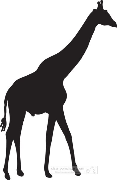 standing-giraffe-sideview-silhouette.jpg