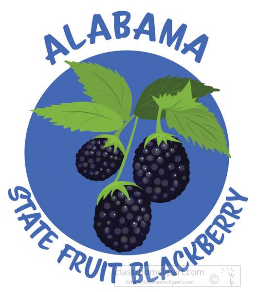 blackberry-state-fruit-alabama-clipart.jpg