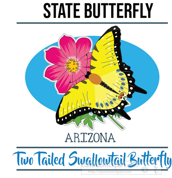 arizona-state-butterfly-two-tailed-swallowtail-butterfly-vector-clipart-image.jpg